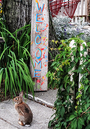bunny welcome vertical