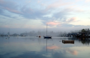 Foggy Smiths Cove