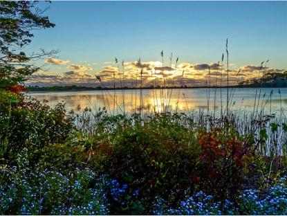 Gods glorious morning at niles pond